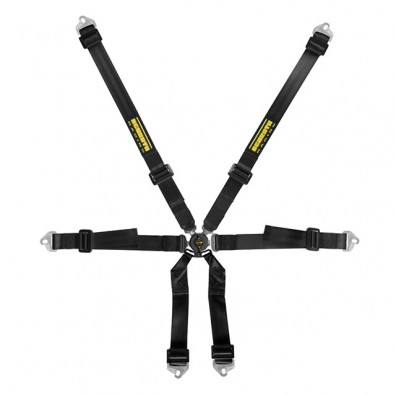 Schroth Clubman 2 X 2 Saloon Harness